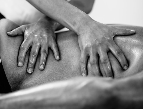 Sport Massage for Equestrian